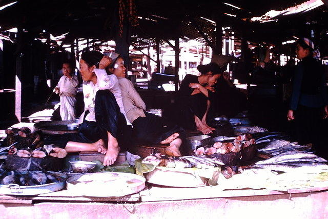 Market Place in Ban Me Thuot (fish department!)
